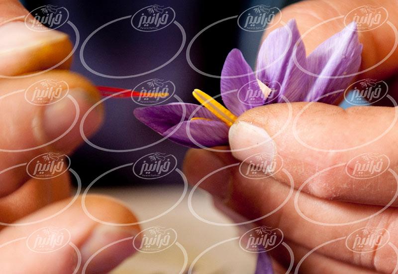 دریافت جدید ترین افشره زعفران زردبند از کارخانه