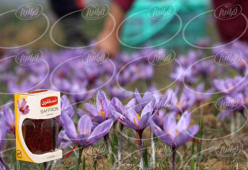 سفارش زعفران مصطفوی مستقیم از دفتر فروش