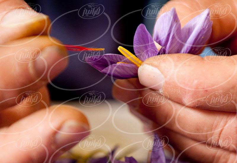 سفارشات اصلی پودر زعفران ناب خراسان